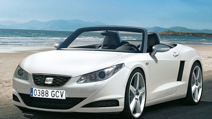 Seat Roadster
